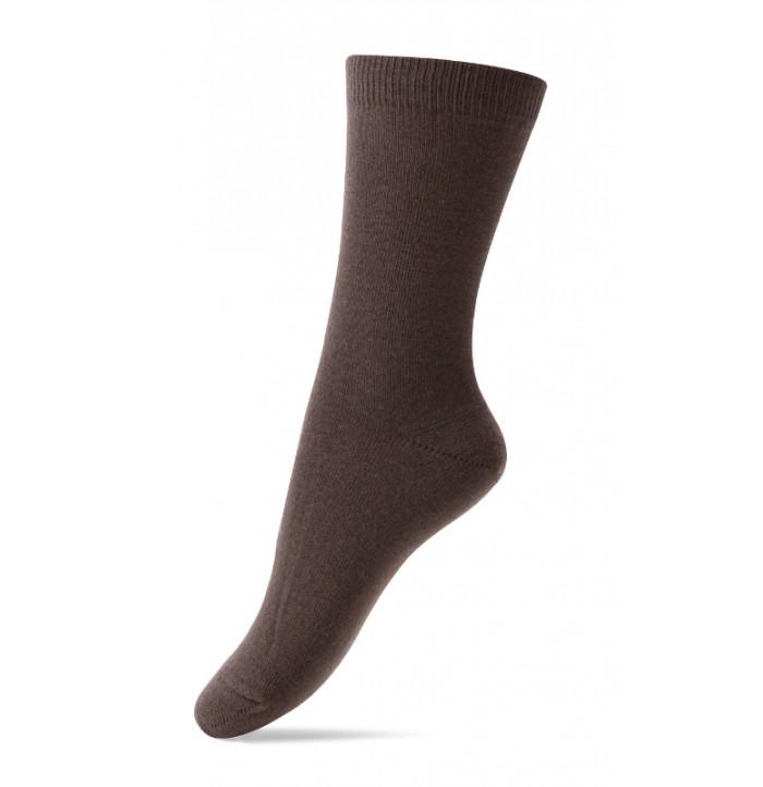 Melton - Robin brown-2230-485
